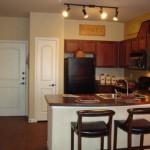 Cool Springs at Frisco Bridges Apartment Kitchen