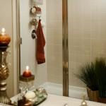 Lebanon Ridge Apartment Master Shower