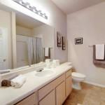 Marquis at Stonebriar Apartment Bathroom