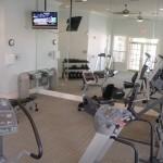 Stonebriar of Frisco Apartment Fitness Center