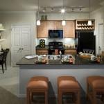 Camden Panther Creek Apartment Kitchen