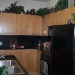 The Residences at Frisco Square Plaza & Boulevard Apartment Kitchen
