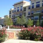 Cool Springs at Frisco Bridges Apartment Main View