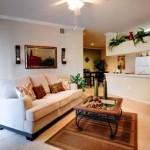 Marquis at Stonebriar Apartment Living Room