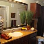 Cool Springs at Frisco Bridges Apartment Bathroom