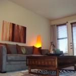 Cool Springs at Frisco Bridges Apartment Living Room