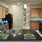 Camden Panther Creek Apartment Kitchen.