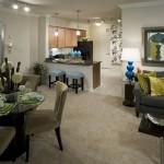 Camden Panther Creek Apartment Living Area